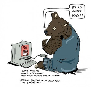BearIllustrationMetaDescription