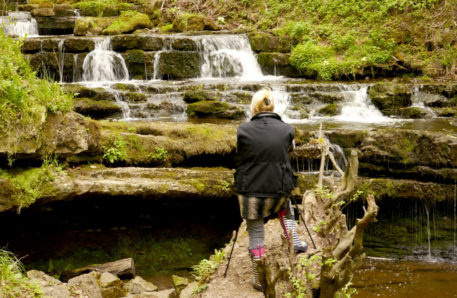 Gill taking pictures