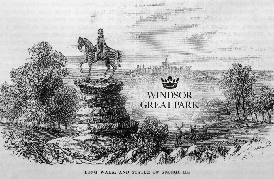 Windsor Great Park guide